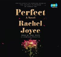 Cover image for Perfect A Novel.