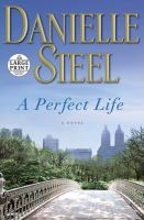 Cover image for A perfect life a novel