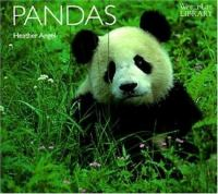 Cover image for Pandas