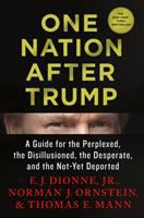 Cover image for One nation after Trump : a guide for the perplexed, the disillusioned, the desperate, and the not-yet deported