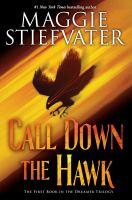 Imagen de portada para Call down the hawk. bk. 1 : Dreamer series
