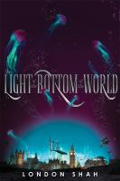 Cover image for The light at the bottom of the world