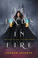Cover image for It ends in fire