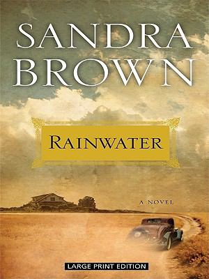 Cover image for Rainwater [large print]