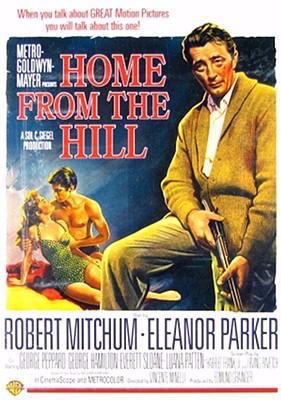 Cover image for Home from the hill