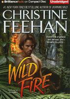 Cover image for Wild fire. bk. 4 Leopard people series