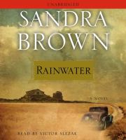 Cover image for Rainwater a novel