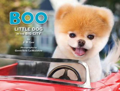 Cover image for Boo little dog in the big city