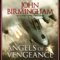 Cover image for Angels of vengeance. bk.3  Without warning series