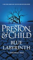 Cover image for Blue labyrinth. bk. 14 [large print] : Pendergast series