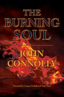 Cover image for The burning soul