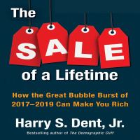 Cover image for The sale of a lifetime how the great bubble burst of 2017-2019 can make you rich