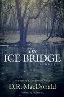Cover image for The ice bridge