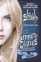 Cover image for Unseen. bk. 1 : Vampire diaries. The salvation series
