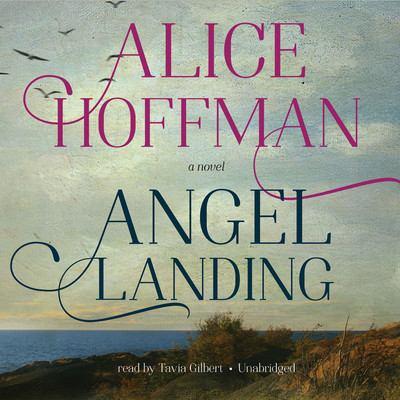 Cover image for Angel landing