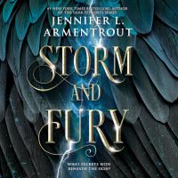 Cover image for Storm and fury