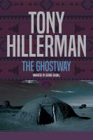 Cover image for The ghostway