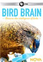 Imagen de portada para Bird brain [videorecording DVD]