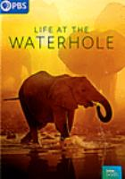 Cover image for Life at the waterhole [videorecording DVD]