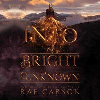 Imagen de portada para Into the bright unknown. bk. 3 [sound recording CD] : Gold seer series