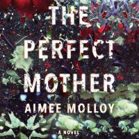 Cover image for The perfect mother [sound recording CD] : a novel