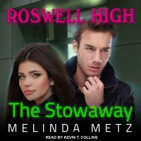 Cover image for The stowaway