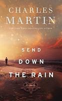 Imagen de portada para Send down the rain [sound recording CD]