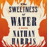 Cover image for The sweetness of water [sound recording CD] : a novel