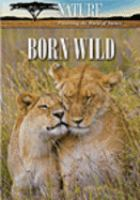 Cover image for Born wild the first days of life