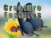 Cover image for Creature features. Salamanders, frogs & tadpoles, toads & sea turtles. Vol. 1 [videorecording DVD]