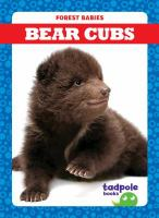 Cover image for Bear cubs