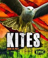 Cover image for Kites : Birds of prey