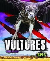 Cover image for Vultures : Birds of prey