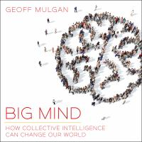 Cover image for Big mind how collective intelligence can change our world