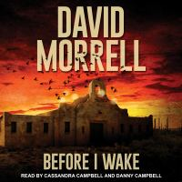 Cover image for Before I wake [sound recording CD]