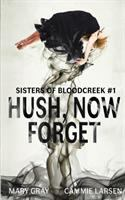 Cover image for Hush, now forget. bk. 1 : Sisters of Bloodcreek series