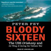 Cover image for Bloody sixteen the uss oriskany and air wing 16 during the vietnam war