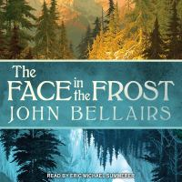 Cover image for The face in the frost