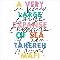 Cover image for A very large expanse of sea [sound recording CD]
