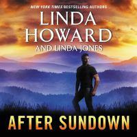 Imagen de portada para After sundown [sound recording CD] : a novel