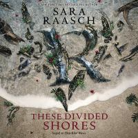 Cover image for These divided shores. bk. 2 [sound recording CD] : Stream raiders series
