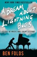 Cover image for A dream about lightning bugs : a life of music and cheap lessons