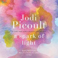 Cover image for A spark of light A Novel.