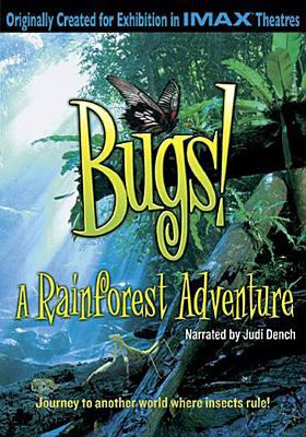Cover image for Bugs! a rainforest adventure