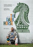 Cover image for The dark horse [videorecording DVD]