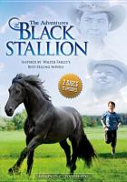 Cover image for The adventures of the black stallion. Season 1, Vol. 1 [videorecording DVD]