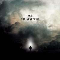 Cover image for The awakening [sound recording CD]