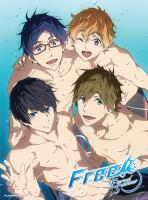 Imagen de portada para Free! Eternal summer. [videorecording DVD] : Season 2, Complete