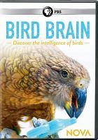 Cover image for Bird brain [videorecording DVD]