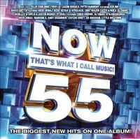 Imagen de portada para Now that's what I call music. 55 [sound recording CD].